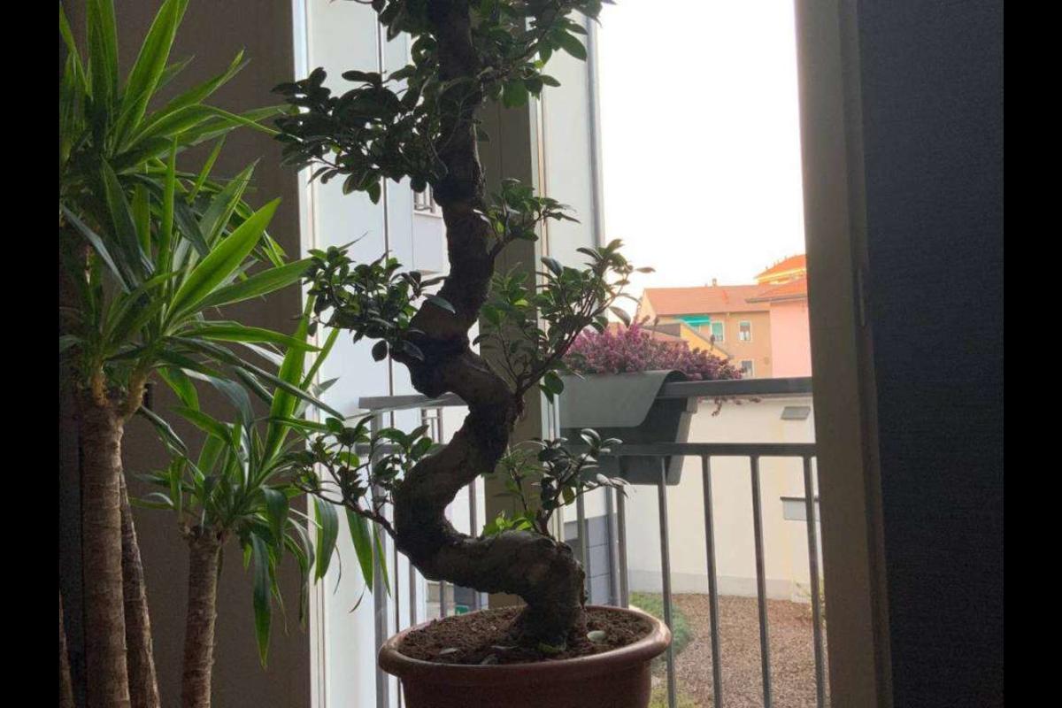Bilocale arredato con box mm crescenzago in Vendita a Milano